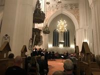 Christmas Concert in the Cathedral - 3rd Day - 13th Dec 2018